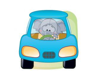 El Efecto Elefante y sus problemas al volante